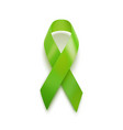 realistic green ribbon 3d icon isolated on white vector image vector image