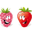 strawberry and raspberry vector image vector image