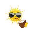 sun drink coconut milk vector image vector image