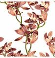 tropical vintage beige brown orchid flower pattern vector image vector image