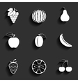 Fruits flat icon set vector image vector image