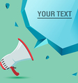 Megaphone Voice Advertise Text Bubble vector image vector image