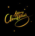 merry christmas lettering gold vector image