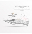 plant in hand low poly wire frame on white vector image vector image