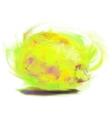 drawing lemon vector image vector image