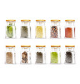 herbs spices jars icon set vector image vector image