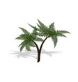 plant in isometric style cartoon tropical tree vector image vector image