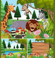 background scenes with wild animals and board vector image vector image