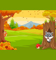 cartoon squirrel with raccoon in autumn forest vector image vector image