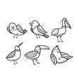 cute hand drawn birds set vector image vector image