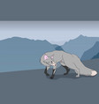 fox on a background of mountains vector image vector image