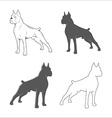 silhouette dog vector image
