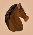 The head of a brown horse stallion drawing vector image vector image