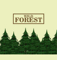 wild forest trees vector image vector image