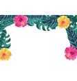 nature flowers cartoon vector image vector image