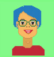 pixel girl avatar vector image vector image