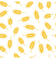 seamless wheat or rye pattern vector image vector image