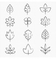 thin line leaves collection vector image