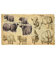 Animals theme BOVIDAE cows bisons yak buffalo pac vector image vector image