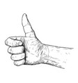 artistic or drawing of thumb up hand gesture vector image
