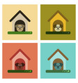 assembly flat icons dog in booth vector image vector image