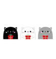 cute cat face head set gift box kawaii animal vector image