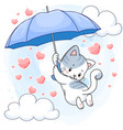 cute spotted kitten hanging on a blue umbrella vector image