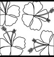 tropical flower decorative frame vector image