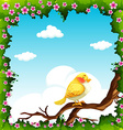 Yellow bird on the branch vector image