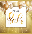 abstract designs final sale banner template with vector image vector image