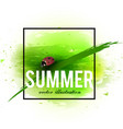 beautiful background with green grass and ladybug vector image vector image