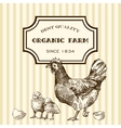 eco farm chicken vector image