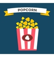 Popcorn box icon vector image