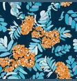 rowan seamless pattern with orange berries vector image