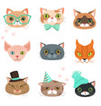 set of cute cats heads of different breeds vector image vector image