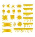 set of sweet honey drops vector image vector image