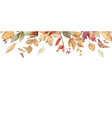 watercolor border with fall leaves vector image