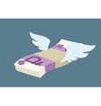 Winged pack of russian rubles vector image vector image