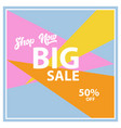 big sale background vector image vector image