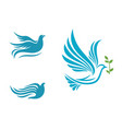 bird wing dove logo template vector image vector image
