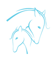 Contour of horses vector image vector image