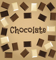 dark white and milk chocolate vector image vector image