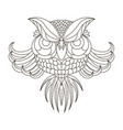 eagle owl birds vector image