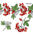 endless horizontal border with ripe berries vector image vector image