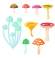 Isolated cartoon mushrooms on white vector image