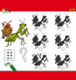 shadow activity game with bug characters vector image vector image