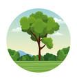 tree bushes forest landscape stamp vector image