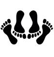 Feet of couple having sex vector image