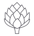 artichoke line icon sign on vector image