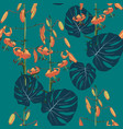 exotic tropical monstera leaves and lilies flowers vector image vector image